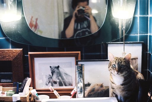 Snapshots from the Boudoir: Still Life, Mirror Selfies and Cats with Corinne Camiade