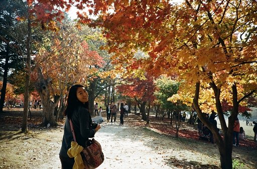 Wanderlust Wonderlist: Fall Foliage Destinations in Asia