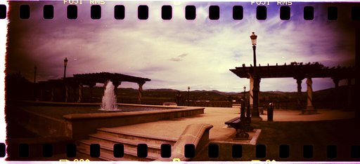 Love, Lomography, and the Long Haul: San Francisco and Napa