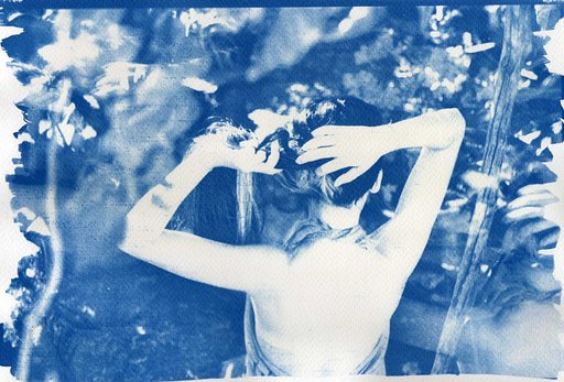 Awesome Albums: Cyanotype by ibrown