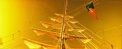 Painting it Golden with Lomography