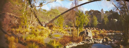 Auckland Series: Auckland Zoo