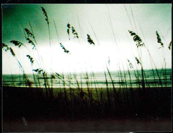 Dianasaur is our LomoHome of the Day!