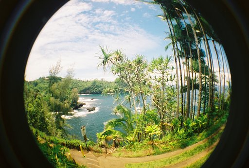 Take the Scenic Route in Hilo, Hawaii
