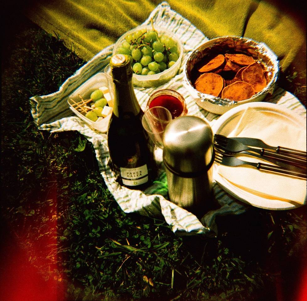 Lomography Guide to Prague: Picnic Days