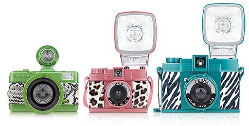 Go Wild With Lomography Valentine's Edition Cameras