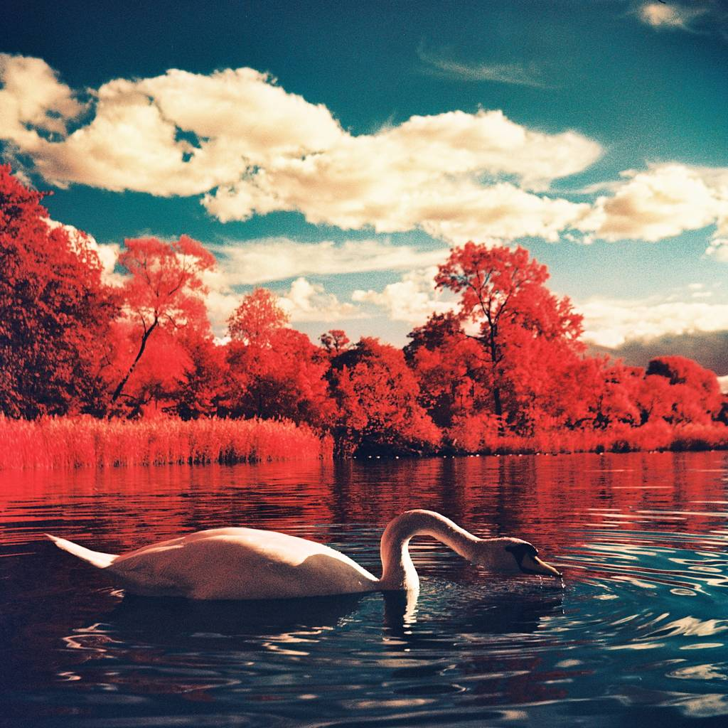 Surreal Landscapes Taken Using Color Infrared Film and Lubitel Cameras