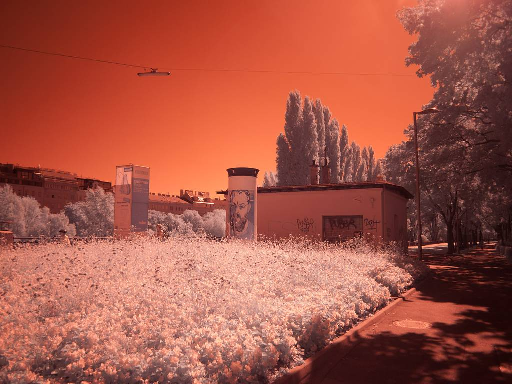 Taking Infrared Shots with the Lomography Experimental Lens Kit