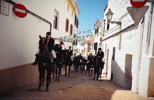 "The ""Jaleo"", or the Menorca Horse Festivals"