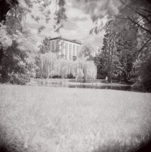 Ilford SFX Infrared 200 120