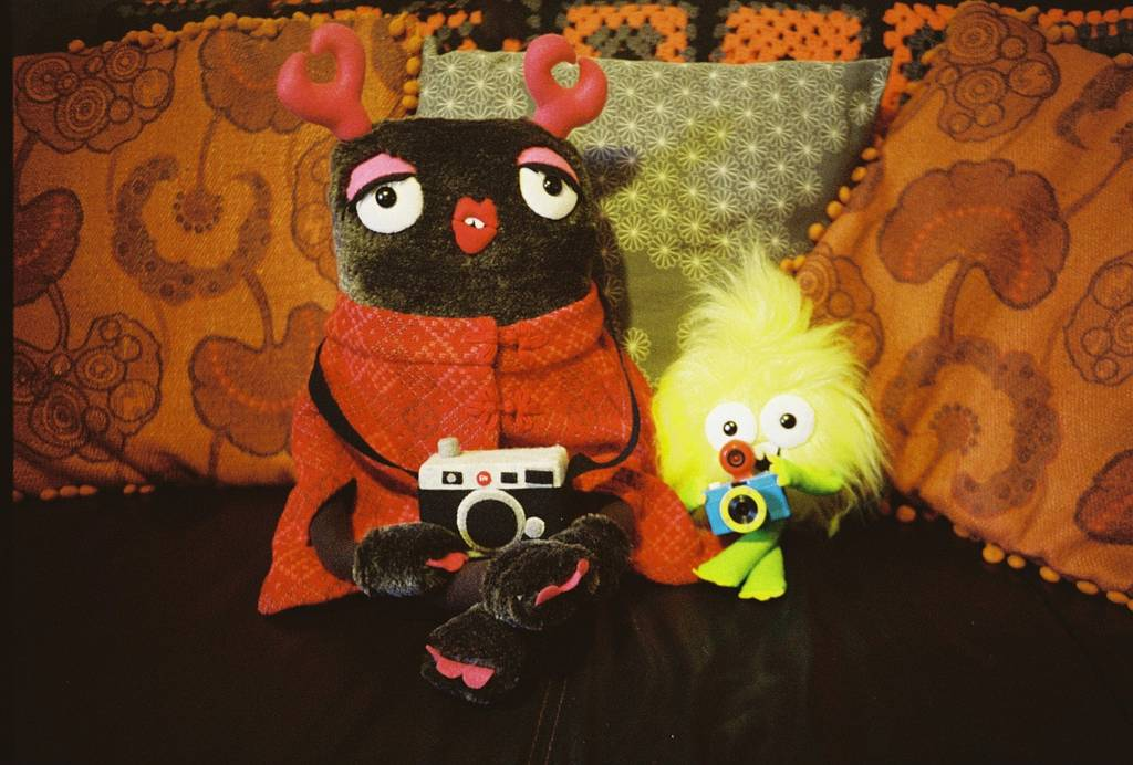 Crafty Creativity: LomoAmigo Felt Mistress