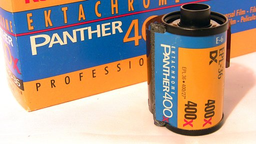 Kodak Ektachrome Panther 400  (35 mm) – Release the Panther