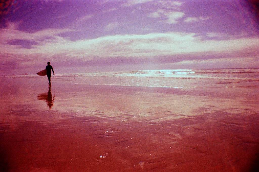 Lomography Recap: January 2012