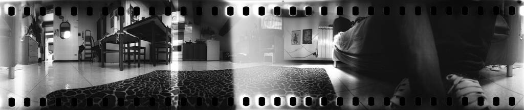 Ilford Pan F: Finding a Good Substitute with the Polypan F