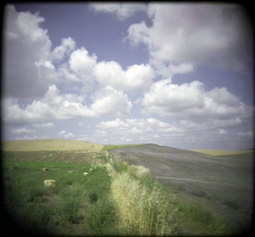 Landscape Photography With A Holga
