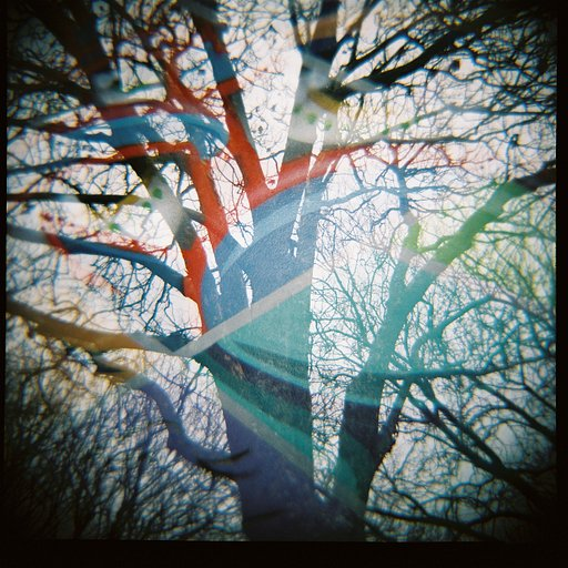 Second time round with the Diana F+