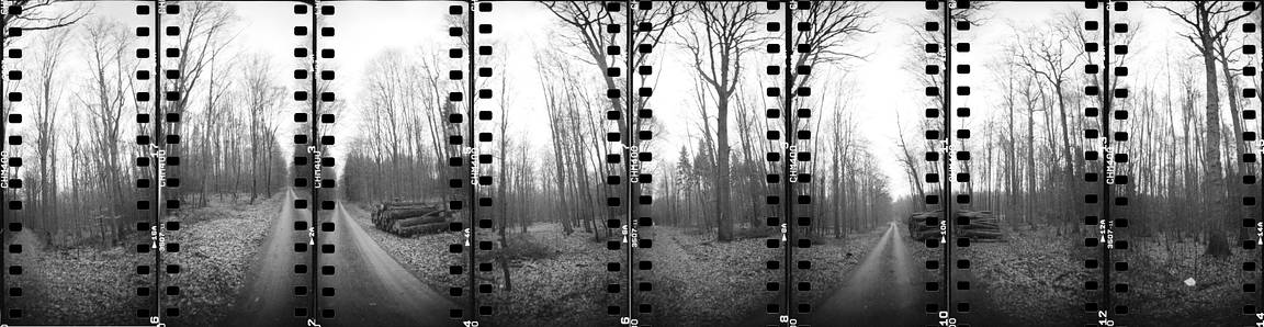 Stereograph is our LomoHome of the Day!