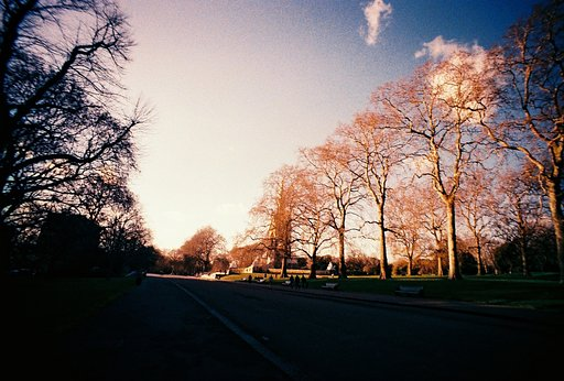 Capturing Springtime in Hyde Park with Tungsten film and the LC-Wide