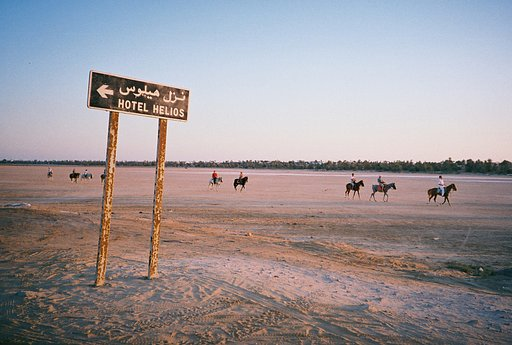 Fun Under the Sun: The Wonderful Island of Djerba