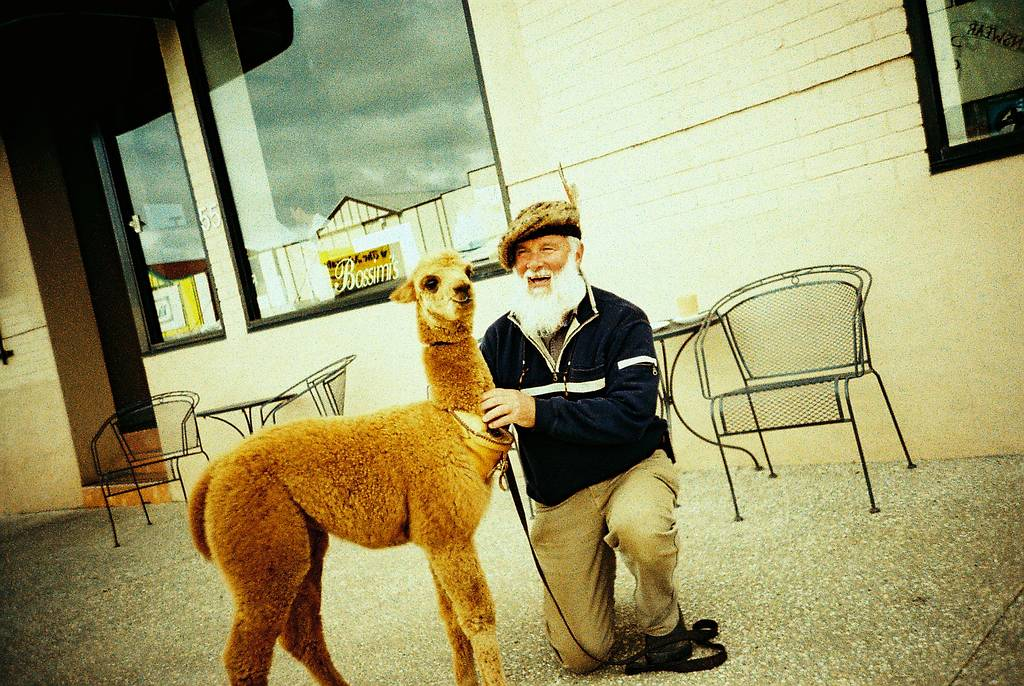 To Love Is to Return, A Guy Next to an Alpaca and Other Great Photos