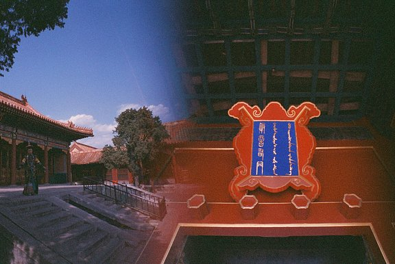 Community Member Color Captures the Forbidden City With the Diana F+ and LC-Wide