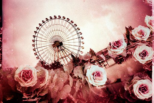 Creative Vision, Personified:The Community's Most Creative Lomographers