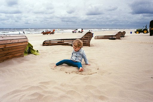 Life in Landscape — a Photo Gallery by @nieuwhollands