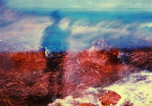 Taking It Slow with the Diana F+ Pinhole