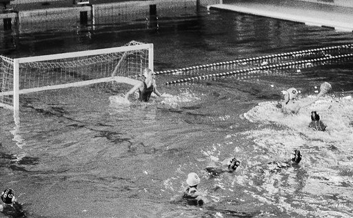 Waterpolo in Black and White