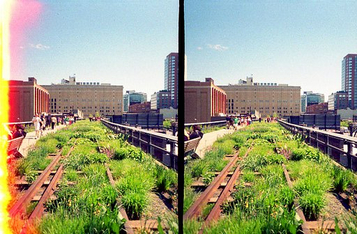 High Line, New York: My Favourite Patch of Greenery