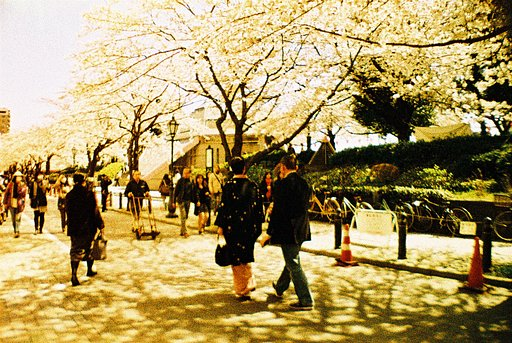 Walking on Sunshine with Lomography XPro 200