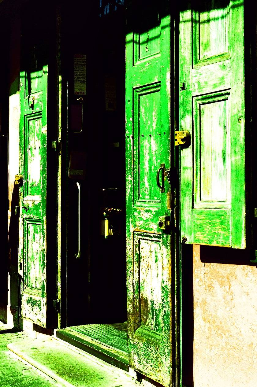 Feeling Green with Cross Processed Fuji Provia 100F