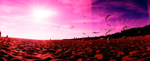 The Lomography Hipshot Showdown: The Best Horizon Views Winners Announcement
