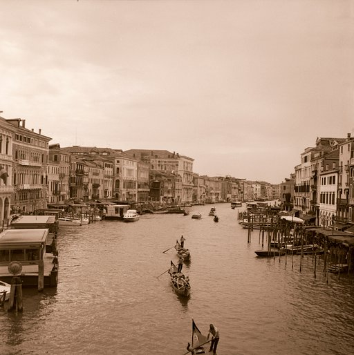 week 37: venezia on roll film