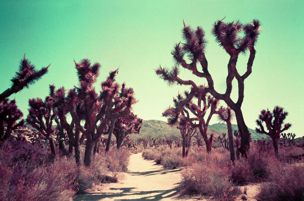 Purple Places: Experimental travel photography by Nick Collingwood