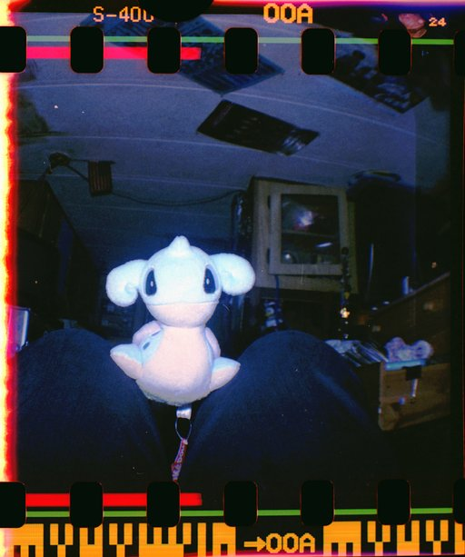 Love at First Lomo: Exposing Those Sprockets with My Diana