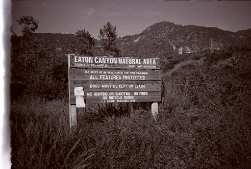 Take a Hike to Eaton Canyon (Pasadena, CA)