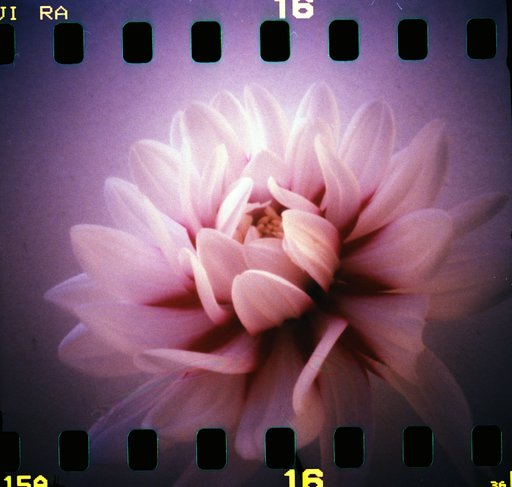 LGS Amsterdam: Maak een pinholefoto op World Pinhole Photography Day!