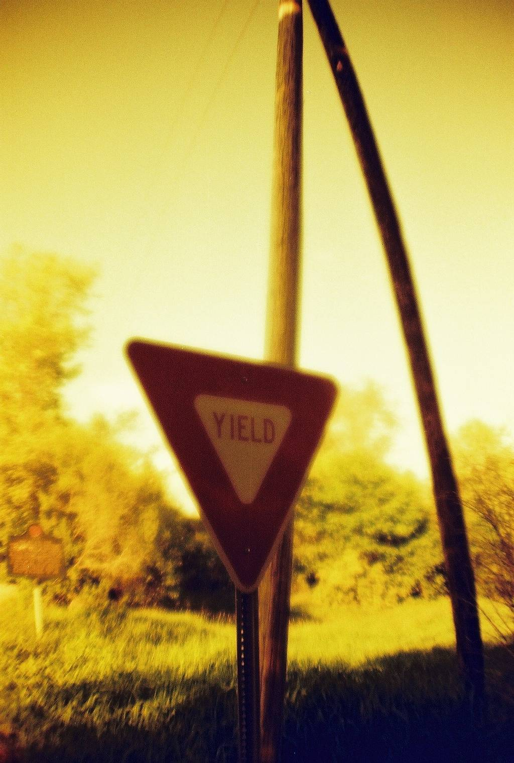 Lomography RedScale (35mm, 100 iso) User-Review