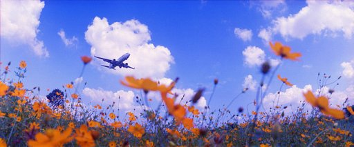 Tuesday Tuesday: Planes Flying Over Fields