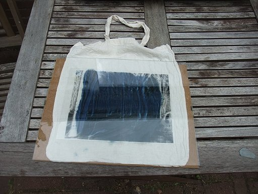 Tote Bagging the Cyanotype