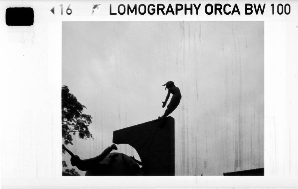 Chasing Silhouettes Using Lomography Orca 110 Film