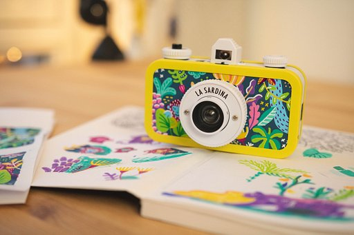 Customizing La Sardina DIY: A Jungle Adventure with Asia Orlando