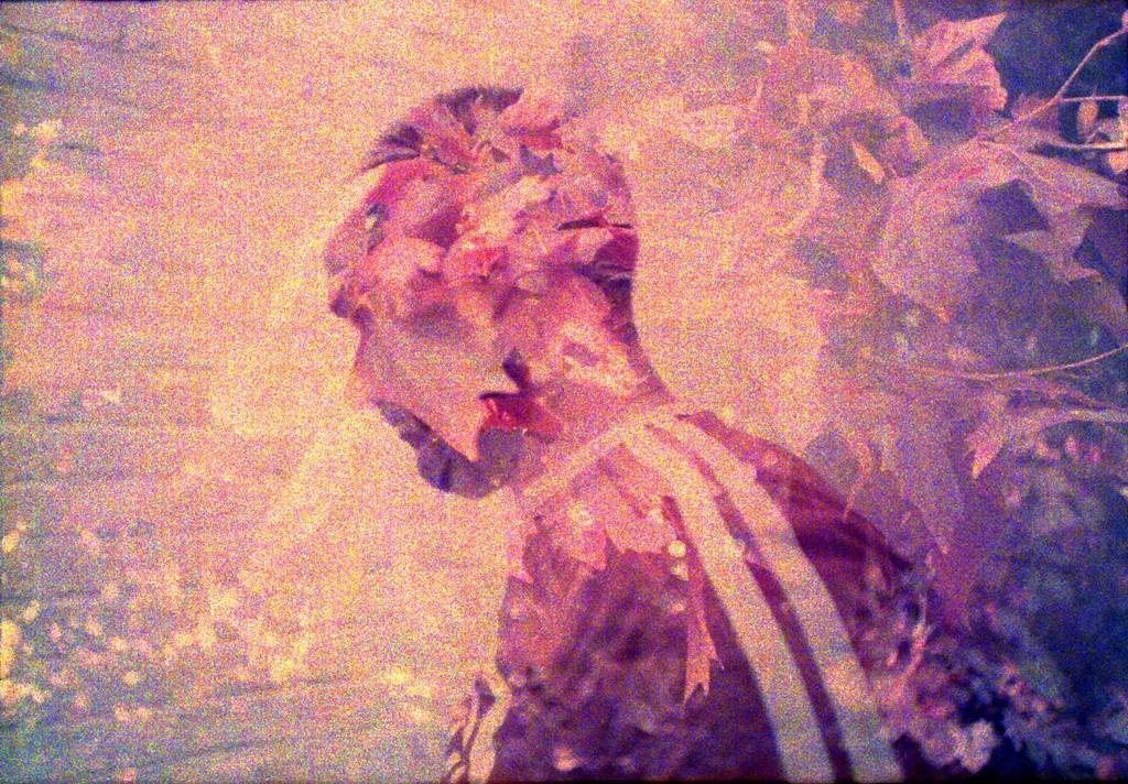 LomoChrome Purple: The Future of Analogue Film