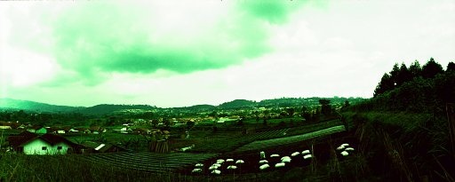 Lomography Day Trips: Escaping the City to Lembang