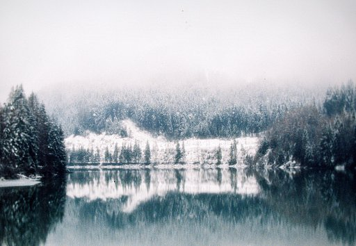 Christian Heidebur: Capturing Enchanted Forests with an Art Lens