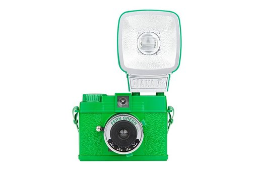 Daily Picks from the Sales Section: Diana Mini Fern Green