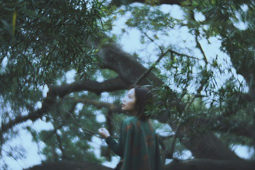 Wangs Lok Creates Fairytales with Daguerreotype Achromat Art Lens