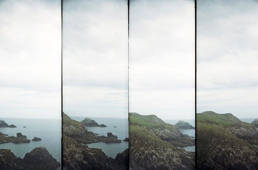 Fun Under the Sun: Birdwatching in Ireland with the SuperSampler