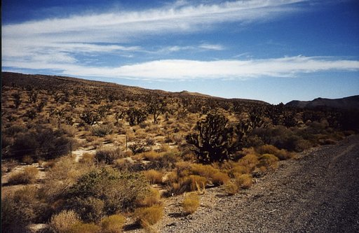 Red Rock Canyon National Conservation Area, Las Vegas